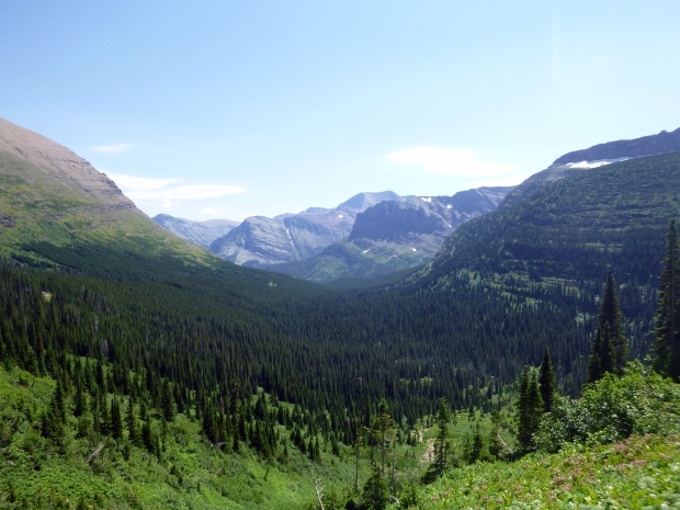 View of forested valley along Iceberg Lake Trail, Glacier National Park, MT