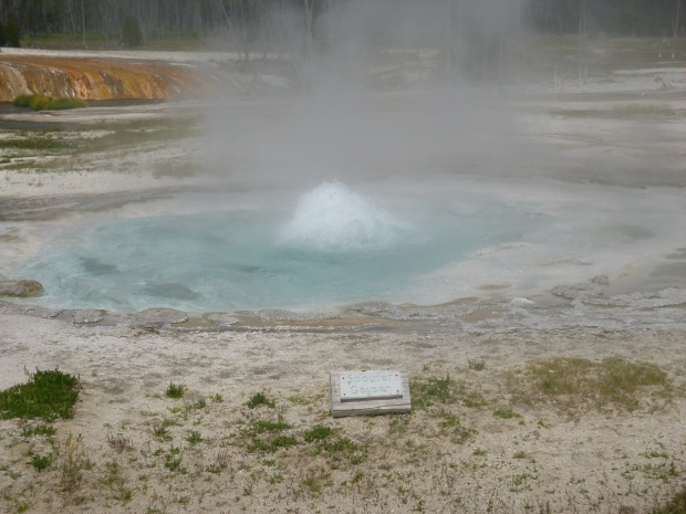 Spouter Geyser in Black Sand Basin, Yellowstone National Park, WY