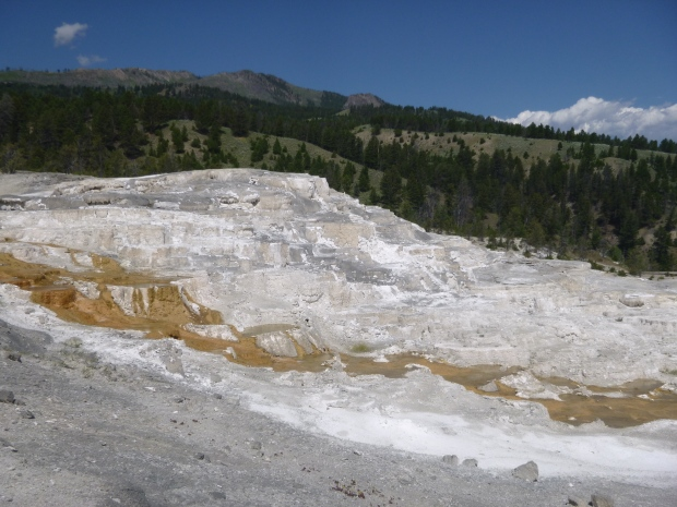Yellowstone part 1 geothermal features another walk in for Minerva terrace yellowstone