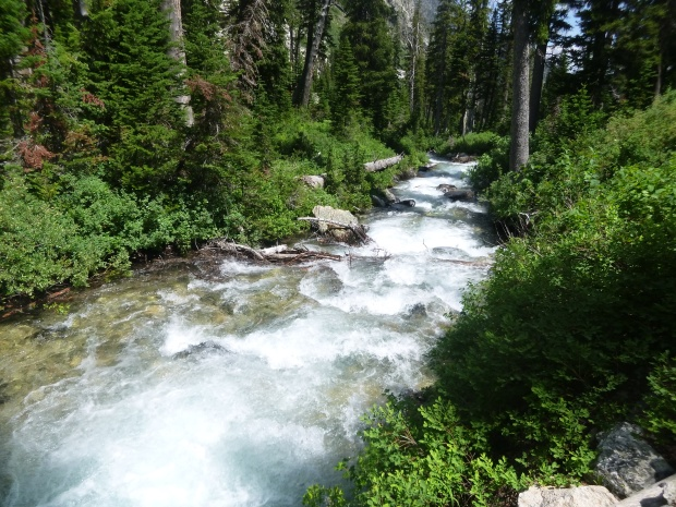 Rushing glacial stream Grand Teton National Park, WY