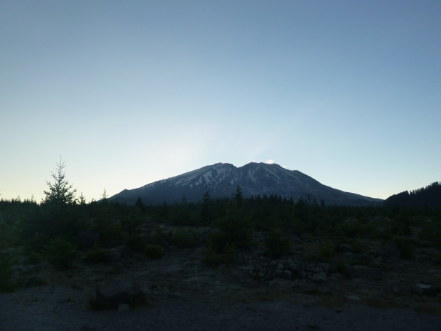 View of the volcano near sunset from Lahar area on southeast side.  Note the scrub brush and young conifers that have only recently began repopulating this area.  Mount St. Helens National Monument, WA.