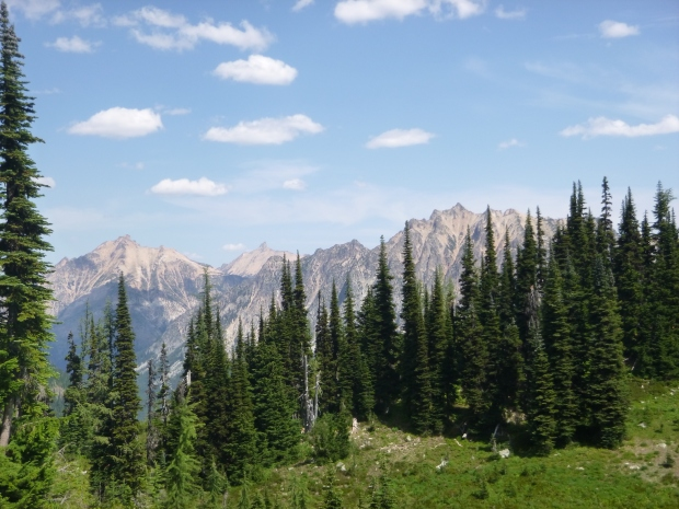 View of mountains on ascent, Maple Pass Trail, North Cascades National Park, WA