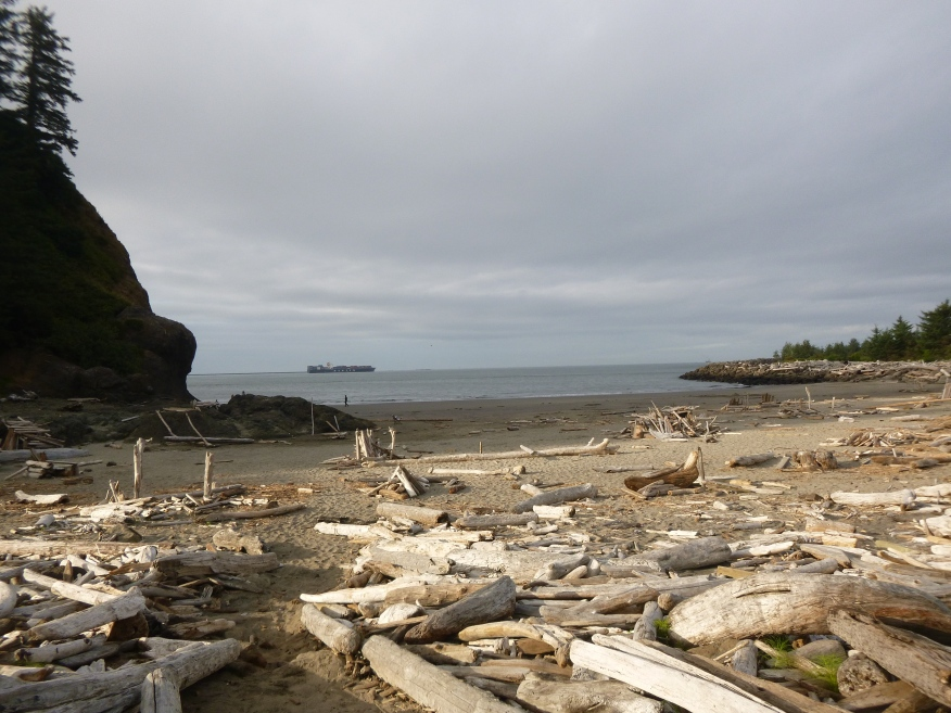 Cape Disappointment: A Hike to a Lighthouse Leads to an Abandoned Battery