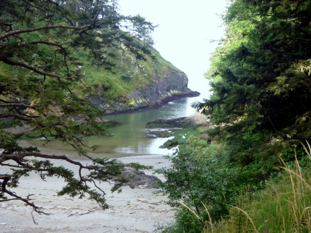 Cove seen from headland above, Cape Disappointment State Park, WA