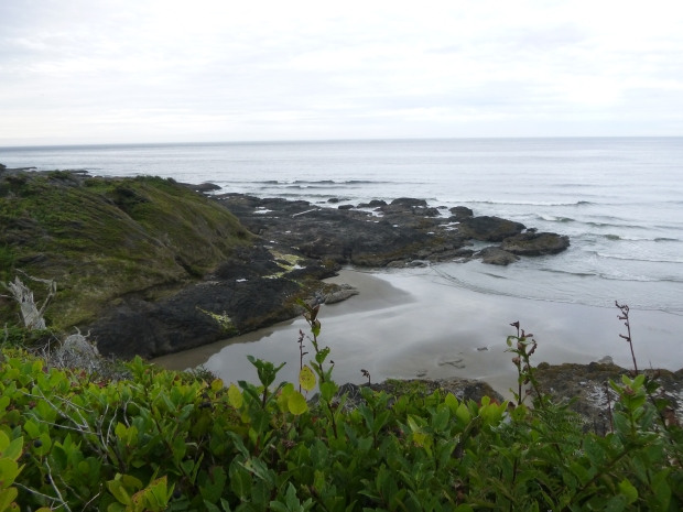 View into a bay at low tide, Pacific Ocean, Oregon