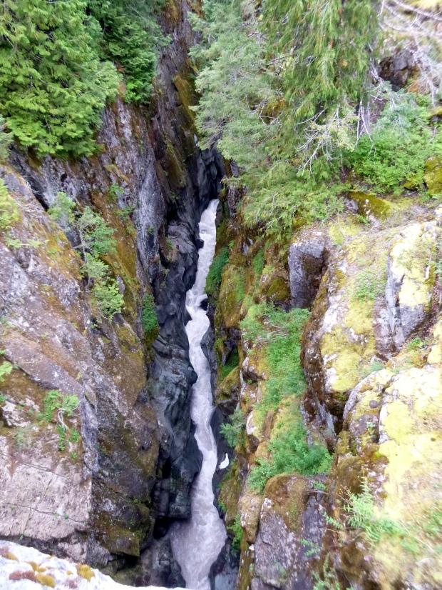 Box Canyon viewed from bridge 180 feet above, Mount Rainier National Park, WA
