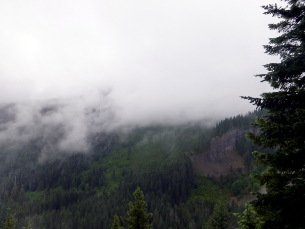 Fog bank moving across valley.  Within two minutes, the fog had completely shrouded the valley as well as the mountains. Mount Rainier National Park, WA