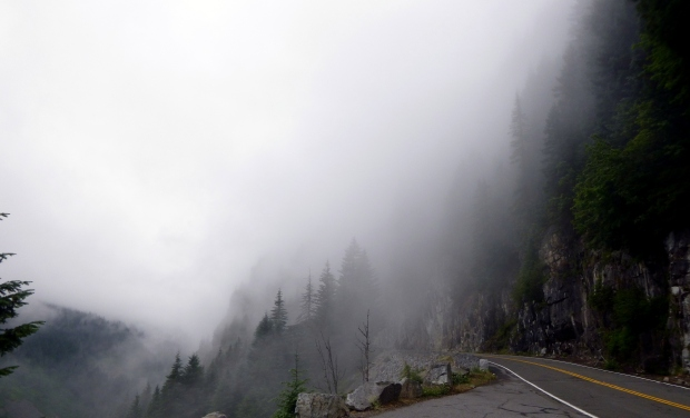 Fog bank rolling onto the road, Mount Rainier National Park, WA