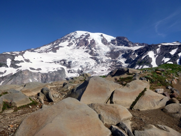 The mountain looms on the ascent, Skyline Loop Trail, Mount Rainier National Park, WA