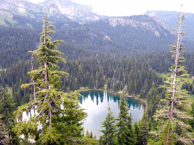 Palisades Lake, viewed from lookout on way to Sunrise Point, Mount Rainier National Park, WA