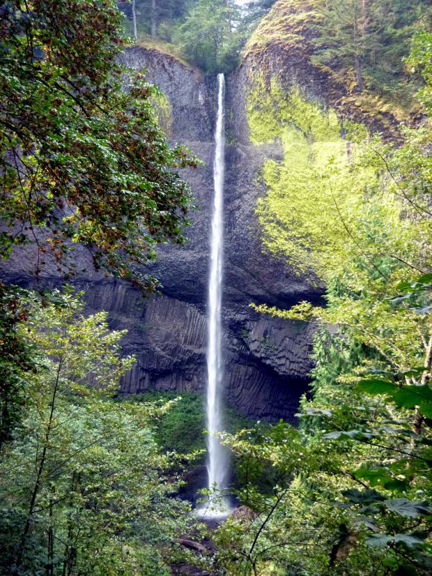 Latourell Falls from overlook, Columbia River Gorge, Oregon