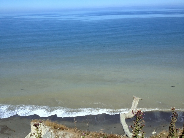 View from cliffs at Dungeness National Wildlife Refuge