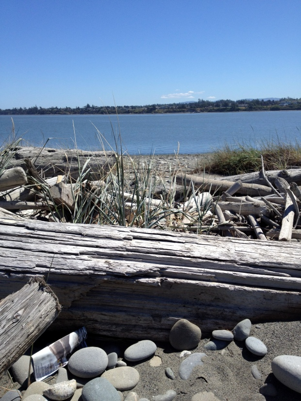 Looking into Dungeness Bay from Spit, Dungeness National Wildlife Refuge
