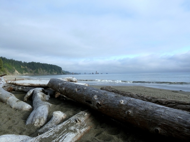 View from our campsite on Third Beach, Olympic National Park