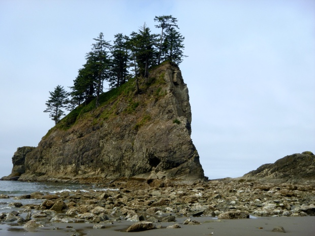 Large, forested sea stack off Second Beach, Olympic National Park