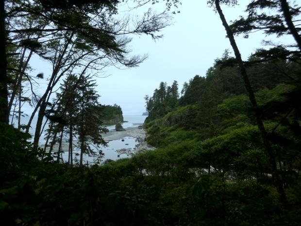 View of Ruby Beach from cliffs, Olympic National Park
