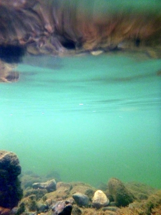 Underwater shot of the shallows of the Gunnison River, Black Canyon of the Gunnison National Park, Colorado