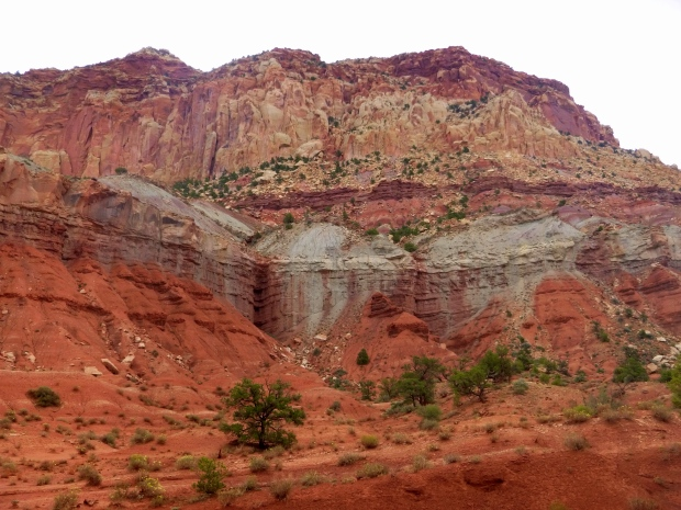 Sedimentary rock layers along Scenic Drive, Capitol Reef National Park, Utah