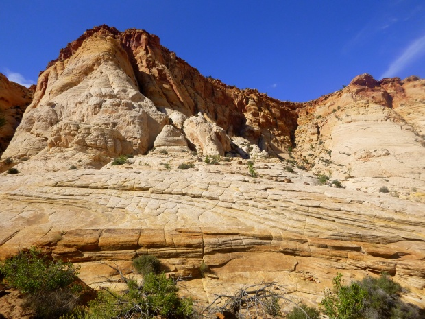 White Navajo sandstone in cliffs, Capitol Gorge Trail, Capitol Reef National Park, Utah
