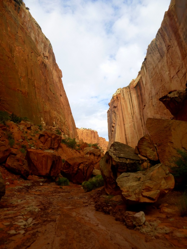 Upper Spring Canyon cluttered with boulders, Capitol Reef National Park, Utah