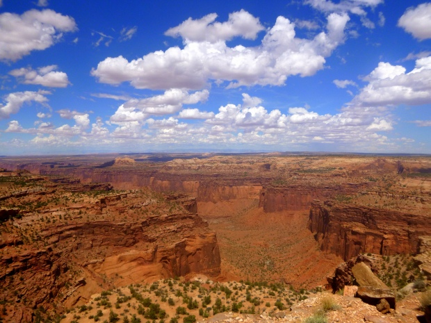 View of Taylor Canyon from atop Aztec Butte, Canyonlands National Park, Utah