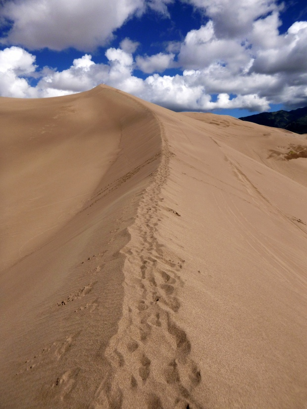 "A ""trail"" in the dune ridges, Great Sand Dunes National Park, Colorado"