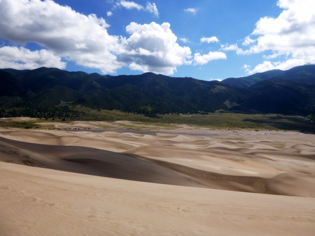Creek bed and flood plain below dunes, Great Sand Dunes National Park, Colorado