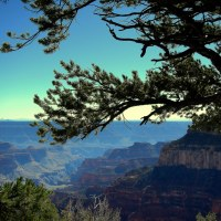 The Grand Canyon: North Rim