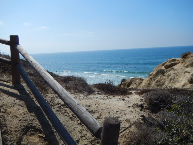 Trails on cliff at Torrey Pines State Park, San Diego, California