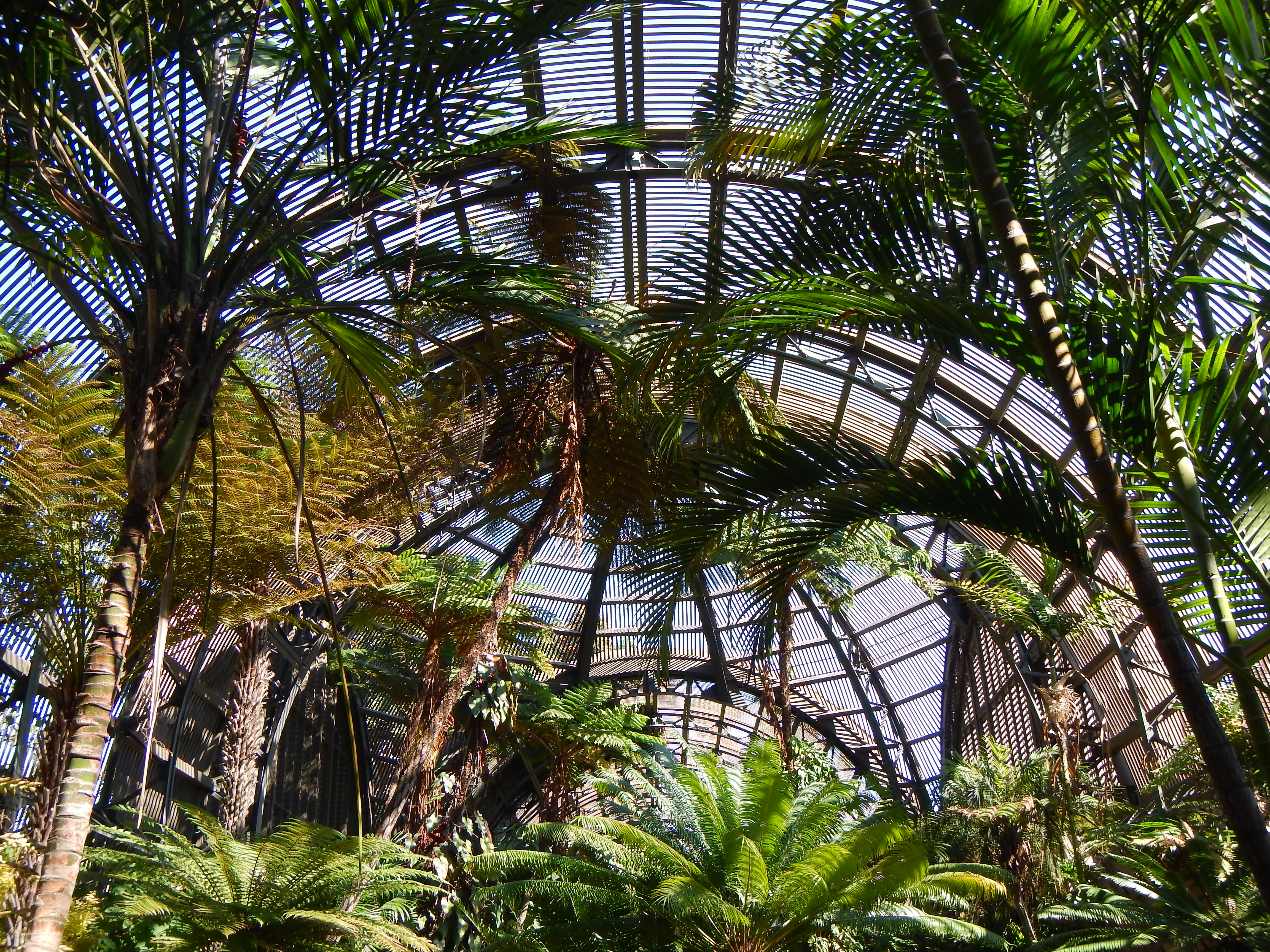 San Diego Part 3 The Architecture And Indoor Gardens Of