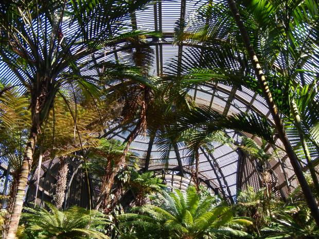 Botanical Garden, Balboa Park, San Diego, California