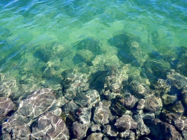 Rocks underwater seen from AIDS Memorial Pier, Key West, Florida