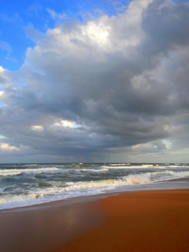 Dark amber sands of Flagler Beach, Florida