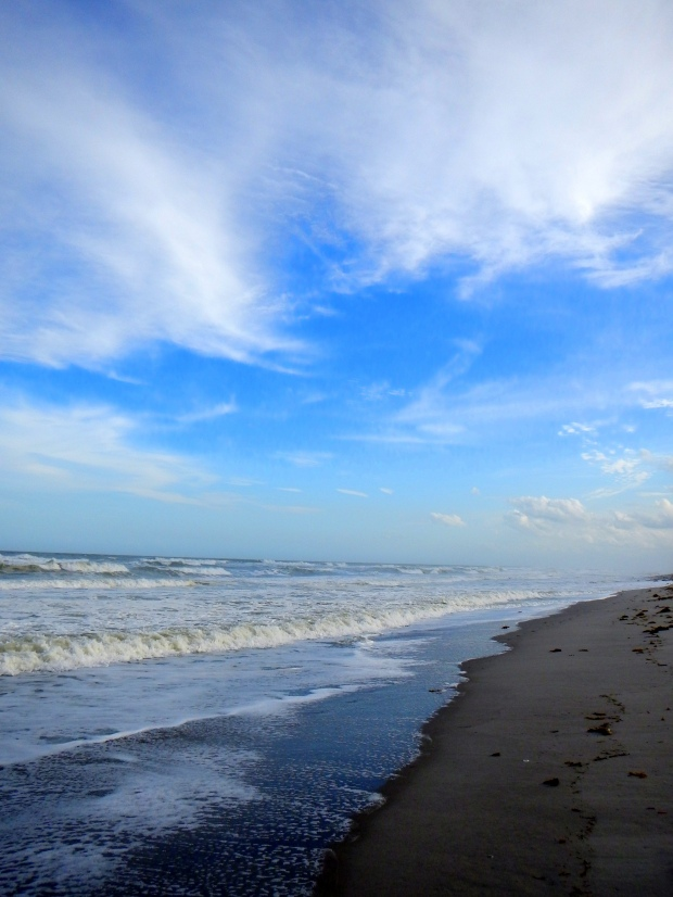 Beach, Canaveral National Seashore, Florida