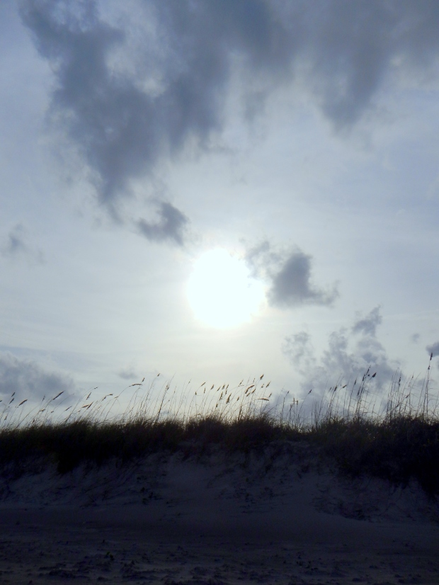 Dunes, Canaveral National Seashore, Florida