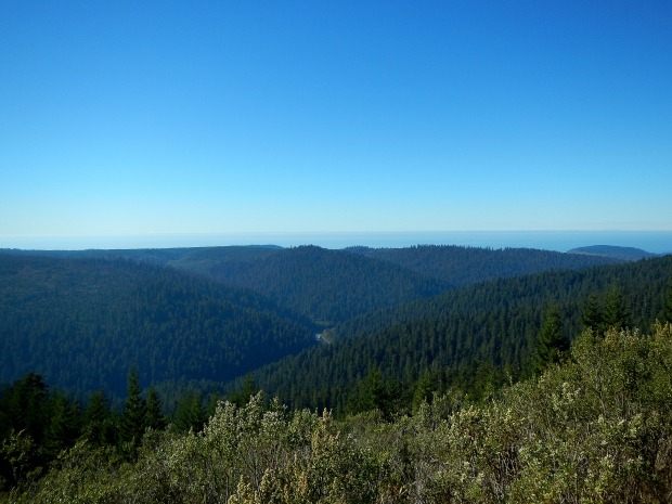 Redwoods Creek Overlook, Redwoods National Park, California