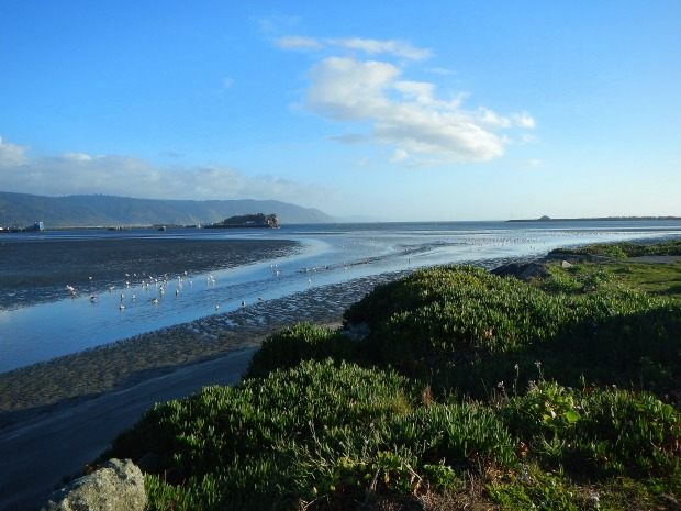 Tidal flats near Battery Point Lighthouse, Crescent City, California
