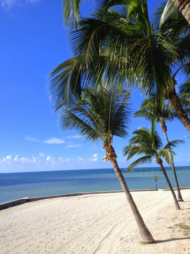View of Higgs Beach from Fort Martello, Key West, Florida