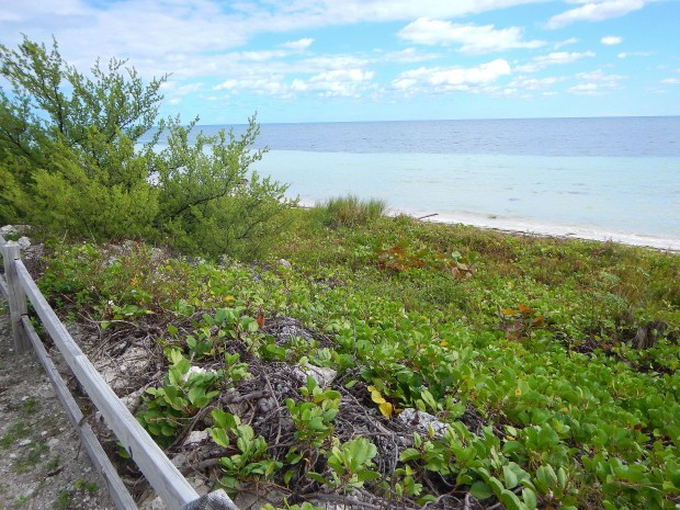 Bahia Honda State Park, Big Pine Key, Florida