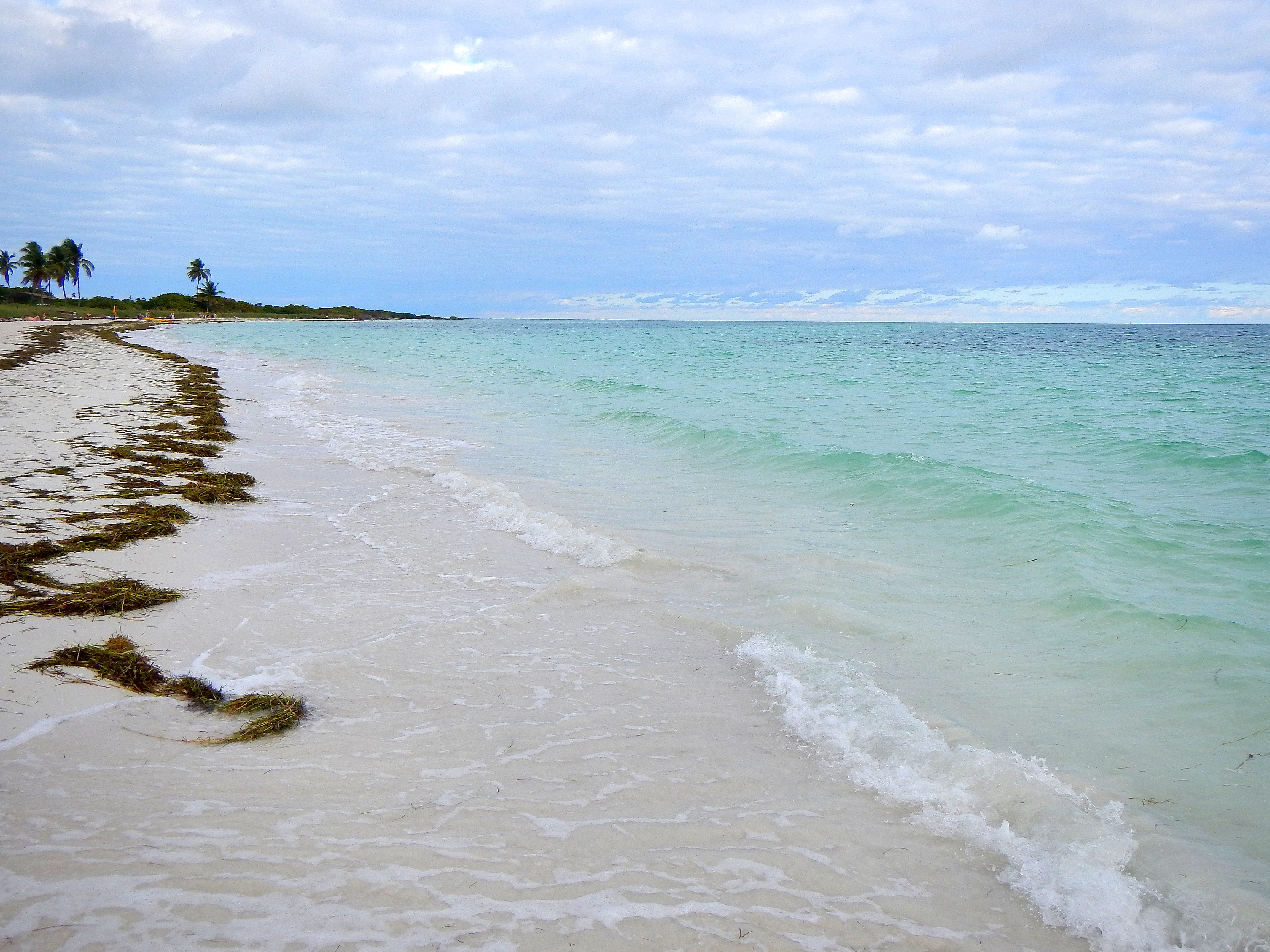 big pine key singles It's a great place to visit, but key west is not exactly family friendly  some  programs are limited to only one or two so if you live in big pine key (zoned for.