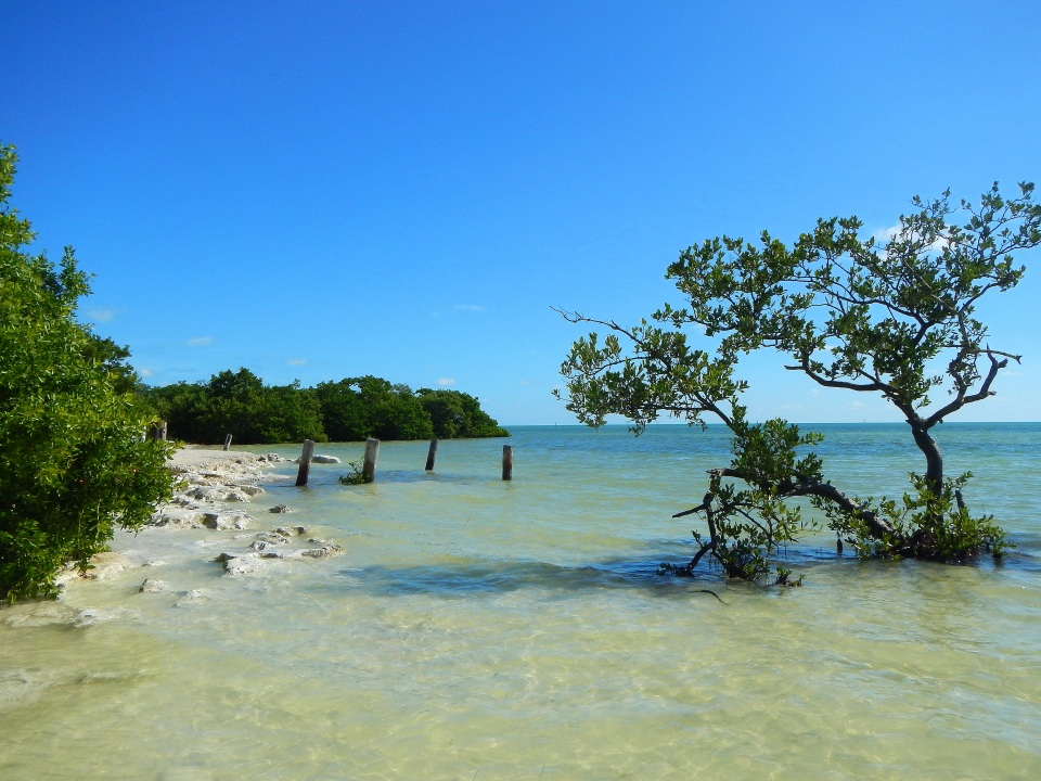 The Florida Keys, Part 5: Anne's Beach Park, Islamorada