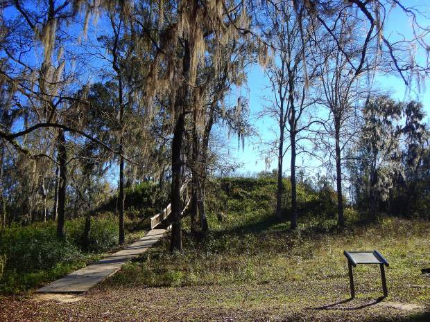 Mound 2, Lake Jackson Archaeological State Park, Tallahassee