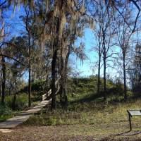 Lake Jackson Mounds Archaeological State Park