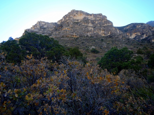 McKittrick Canyon Trail, Guadalupe Mountains National Park, Texas