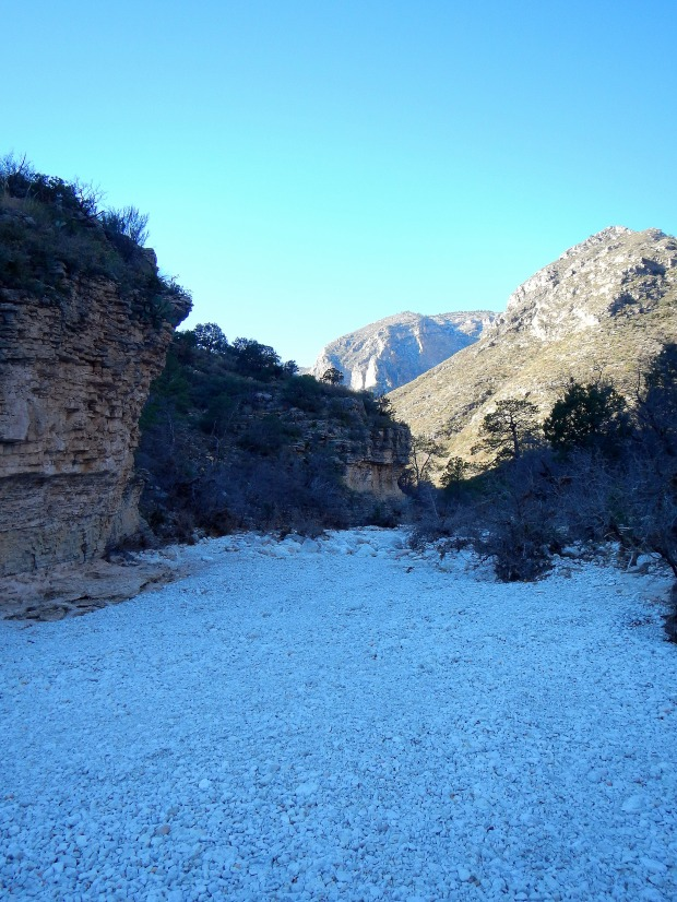 The wash, McKittrick Canyon Trail, Guadalupe Mountains National Park, Texas