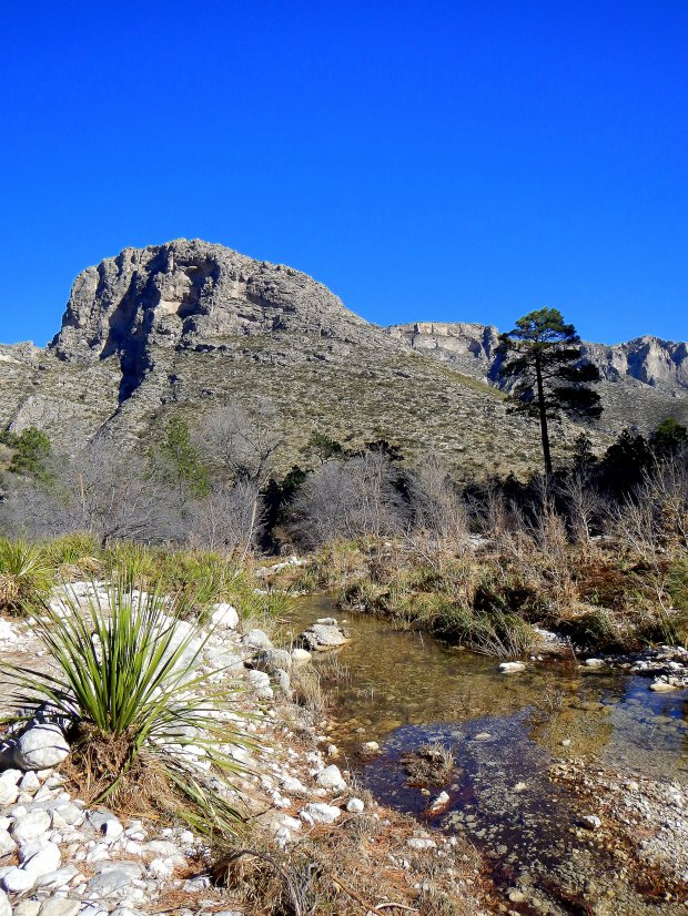 The mountains and the stream, McKittrick Canyon Trail, Guadalupe Mountains National Park, Texas