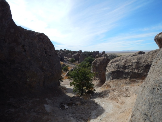 City of Rocks State Park, New Mexico