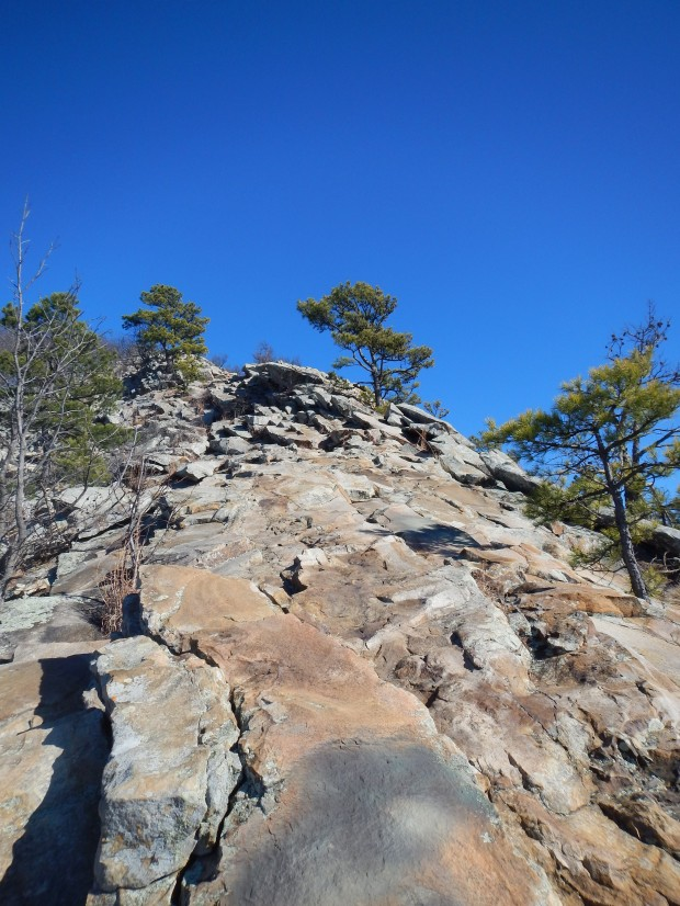 Final ascent, West Summit Trail, Pinnacle Mountain State Park, Arkansas