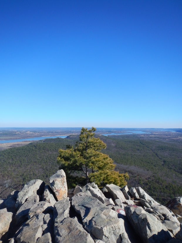 Top of Pinnacle Mountain, West Summit Trail, Pinnacle Mountain State Park, Arkansas