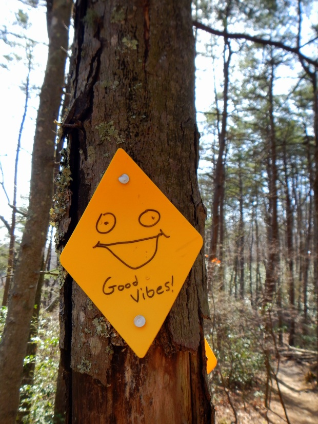 Good vibes on the West Rim Loop Trail, Cloudland Canyon State Park, Georgia